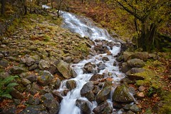 Mountain stream (Nige H (Thanks for 25m views)) Tags: nature landscape stream mountainstream lakedistrict buttermere cumbria england