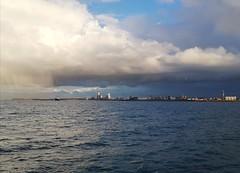 Vanaf de boot van Vlissingen naar Breskens (Omroep Zeeland) Tags: