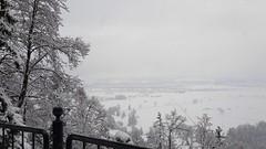 Blick auf den Forgensee (kvasi23) Tags: forgensee see allgäu füssen schwangau neuschwanstein nebel wether november winter schnee sea aloen alps