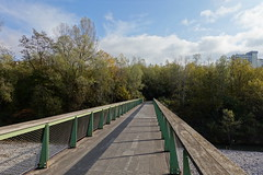 Pedestrian bridge @ Vallon du Fier @ Annecy (*_*) Tags: sony rx100vii m7 2019 november afternoon autumn automne fall annecy 74 hautesavoie walk france europe savoie vallondufier park river