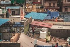 IMG_2014.jpg (bbeber) Tags: 2019 rajasthan inde