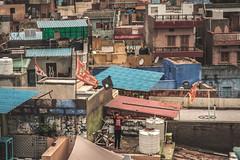 IMG_2018.jpg (bbeber) Tags: 2019 rajasthan inde