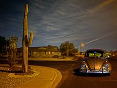 Golden Slumbers (oybay©) Tags: vw volkswagen beetle vwbeetle automobile car suncitywest arizona
