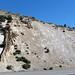 Clastic dikes in the Bishop Tuff (Pleistocene, 760 ka; Sherwin Summit, Owens Valley, California, USA) 2