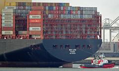 MSC LENI (kees torn) Tags: mscleni rotterdam beagle bolugatowage hybridpowered tug containerschepen damenshipyard hoekvanholland europoort beerkanaal calandkanaal maasmond asdtug
