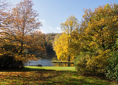 Seated in Stourhead (ORIONSM) Tags: stourhead autumn landscape vista view seat goldentrees water lake wiltshire olympus omdem1 olympus14150mm