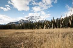 Around Banff Alberta (Pat.Mtl.) Tags: nikon d600 landscape banff alberta mountain rockies canada america tamron 1735mm f284 di osd nature wildlife