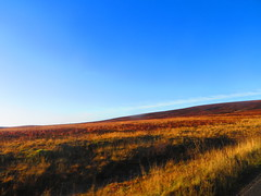 Jodrell Bank (the_gonz) Tags: jodrellbank cheshire jodrellbankdiscoverycentre boneland alangarner