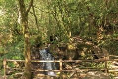 Senda del agua-_DSC4906 (peruchojr) Tags: naturaleza monte montaña sendero agua río regato sendadelagua teis chapela vigo galicia