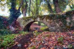 Vathyrema (kzappaster) Tags: bridge sony tamron stonebridge 1728mm mirrorless sonya7 sonya7iii sonya7m3 tamron1728mmf28diiiirxd 1728mmf28diiiirxd autumn fall greece hdr larissa thessaly aghia vathyrema