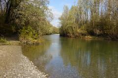 Vallon du Fier @ Annecy (*_*) Tags: sony rx100vii m7 2019 november afternoon autumn automne fall annecy 74 hautesavoie walk france europe savoie vallondufier park fier river riviere