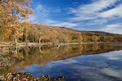 Autumn At It's Best (val.moir) Tags: autumn sallochybay lochlomond reflections loch clouds trees scotland