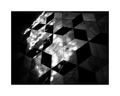 Valencia 46 (BLANCA GOMEZ) Tags: spain valencia bw blackwhite light shadows patterns shapes textures silhouettes arquitectura architecture arquitectos goticovalenciano valenciangothic perecompte unesco unescoworldheritagesite spanishpropertyofculturalinterest lalonjadelaseda silkexchange floor reflections sun heat hot marble stars flooring lonjadelasedayconsuladodemardevalencia lonjadelasedadevalencia patrimoniodelahumanidad