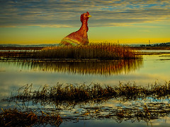 Giant Wild Turkey (Rusty Russ) Tags: wild turkey thankgiving sky colour digital reeds happy colorful flickr day yum bright country scenic marsh gravey world park blue light sunset red cloud sun white tree green art nature america new old summer composite photoshop landscape yahoo google creative manipulation national getty geographic bing stumbleupon sunshine blog image artistic filter pixel hue wiki topaz on1 tinder reddit twitter comons pinterest timber unique unusual russ fascinating facebook seidel