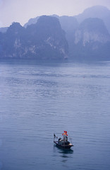 Fishing in Ha Long Bay (flexible fotography) Tags: asia southeastasia vietnam halongbay water fog mist misty day daytime travel famous traveldestinations ocean sea nature outdoors outdoor outdoorphotography island islands landscape lush tranquil tranquility peace serene serenity karsts limestone limestonekarst boat fishingboat fishinginhalongbay blue