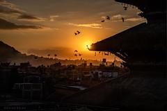 Good Evening, Nepal (Goran Bangkok) Tags: bhaktapur nepal nyatapola sunset morning fujixt3 birds happyplanet asiafavorites temple architechture buildingexterior traveldestinations scenic urbanskyline dusk dramaticsky