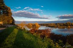 la Loire en automne (jpcarpiste) Tags: fleuve loire automne