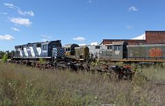 Death Bed (GLC 392) Tags: m420w rs2 alco mlw dm lsrc lake state railway railroad train detroit mackinac mackinaw saginaw mi michigan round house death bed 974 469 3500 the blue devil 1280 c425