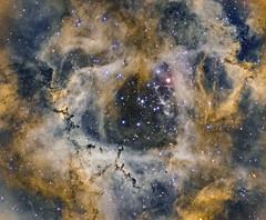 Rosetta Nebula HOO (Synthetic SHO view) (philippeoros) Tags: astrometrydotnet:id=nova3759588 astrometrydotnet:status=solved