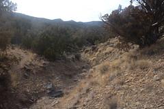 IMG_7570 (yellowstonehiker) Tags: tabbyspeak cedarrange cedarmountains utah fall november wilderness cedarmountainswilderness blm westdessert dayhike dayhikes