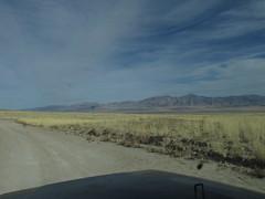 IMG_2383 (yellowstonehiker) Tags: tabbyspeak cedarmountainswilderness cedarrange cedarmountains blm utah fall november dayhikes dayhike wilderness westdesert