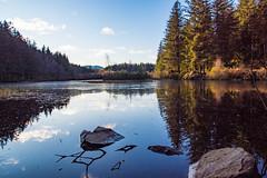 Frozen loch (Danny-ltd) Tags: scotland reflections trees frozen loch water