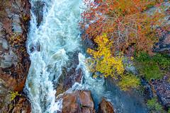Tallulah Falls State Park (Emi Dragoi) Tags: tallulahfallsstatepark tallulah georgia ga water waterfall november autumn fall colors color