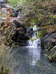 waterfall (madeofchalk) Tags: centralpark loch canon canonphotography canon6d