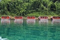 The Emerald Lake (leewoods106) Tags: cheowlanlake cheowlarnlake khaosok khaosoknationalpark nationalpark thailand asia southeastasia east fareast green lake water outdoors mustseeplaces incredibleplaces pod pods greenery jungle