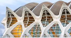 Modern windows (HWW) (Lense23) Tags: architektur architecture hww windows valencia spanien spain window fenster