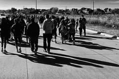 Diabetes walk {320/365} (therealjoeo) Tags: diabetes walk dallas texas blackandwhite 365 365project shadows