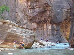 The Narrows Bottoms Up, Utah (Mick_Elliot) Tags: zionnationalpark thenarrows utah amazinglandscapes biology geology
