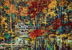 Last Leaves-2019 (D'ArcyG) Tags: trees autumn vivid leaves red yellow brilliant fall woods woodland forest stream reflection