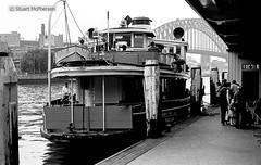 BW 018 1979 09 036 (wvjqkjmy43) Tags: ferry karrabee