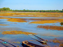 Nong Wai scenes - หนองหวาย 5e1 (SierraSunrise) Tags: thailand phonphisai nongkhai isaan esarn swamp pond reservoir nong nanang boats