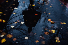 Barbarous coasts (ewitsoe) Tags: autumn cleverhood clothing nikon product rain street warszawa zosia brand erikwitsoe urban warsaw shadow puddle wet autumnday days woman cape coat lookingdown leaves