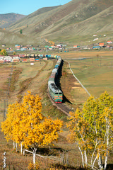 Autumn colors... (N.Batkhurel) Tags: season autumn birch locomotive landscape 2te116 trains trainspotting transport railway railfan rzd railroad mongolia monrailpic mountian ngc nikon nikondf nikkor 24120mm