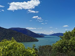 Marlborough Sounds (terri-t) Tags: aotearoa newzealand southisland linkwater landscape lookout cullen nature clouds sky