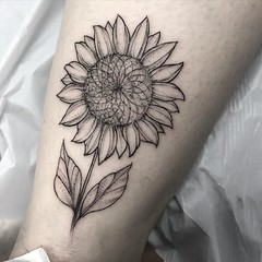 Lil Sunflower 🌻 . .. ... .. . #eyeofjadetattoo #eyeofjade #jeremygolden #jeremy_golden #jeremygoldentattoo #blackwork #blackworkerssubmission #darkartists #blacktattoomag #blacktattooart #btattooing #onlyblackart #blacktattoo #blackink #black #l