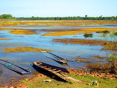 Nong Wai scenes - หนองหวาย 6e2 (SierraSunrise) Tags: thailand phonphisai nongkhai isaan esarn swamp pond reservoir nong nanang boats