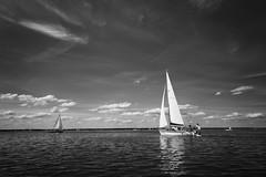 Sailing (jörg_grontzki) Tags: reisefoto travelpics q leica leicaq summer sommer binnensee steinhudermeer segelboot boot vessel sailing