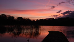 Red Dawn - 1, Dinton Pastures (rq uk) Tags: rquk nikon d750 nikond750 afsnikkor1835mmf3545ged jetty lake red sky redsky reeds trees clouds dawn dintonpastures