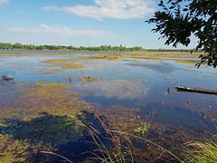 Nong Wai scenes - หนองหวาย 1 (SierraSunrise) Tags: thailand phonphisai nongkhai isaan esarn swamp pond reservoir nong nanang boats