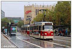 Tram Chemnitz - 2019-20 (olherfoto) Tags: tram tramcar tramway villamos chemnitz cvag tatra tatratram strasenbahn strassenbahn