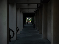 Light at the end of a tunnel. (Joseph Frizzle) Tags: sony 6400 converging geometry day time out doors