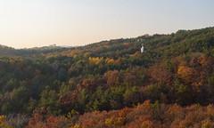 Buddha in the Autumn (TigerPal) Tags: korea southkorea rok anyang anyangartpark forest trees autumn fall season landscape temple buddha buddhism buddhist foliage flickrinseoul