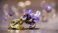 Broche - 7736 (✵ΨᗩSᗰIᘉᗴ HᗴᘉS✵90 000 000 THXS) Tags: fuji fujifilmgfx50s fujifilm bokeh macro belgium europa aaa namuroise look photo friends be yasminehens interest eu fr party greatphotographers lanamuroise flickering