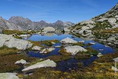 Ein Seeli bei der Capanna da l'Albigna (Bergell, Graubünden) (13/09/2019 -03) (Cary Greisch) Tags: albigna bergell che capannadalalbigna carygreisch kantongraubünden see switzerland valbregaglia lac