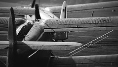 Ready For Take Off (Bernd Kretzer) Tags: antonov an2 flugzeug plane