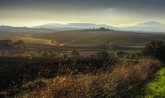 Tuscany19 #2 (Roberto Defilippi) Tags: 2019 372019 rodeos robertodefilippi tuscany toscana tonalitymask tmpanelv5 italy italia gobefilters nikon journey landscape